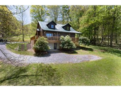Roan Mountain Single Family Home For Sale: 114 Meadow Lane