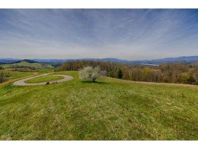 Butler Residential Lots & Land For Sale: Dry Hill