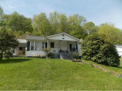 Damascus, Bristol, Bristol Va City Single Family Home For Sale: 776 Wagner Road