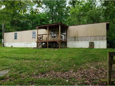 Single Family Home For Sale: 556 Newt Good Rd.