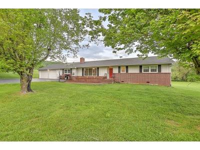 Bristol Single Family Home For Sale: 230 Bethel Dr.