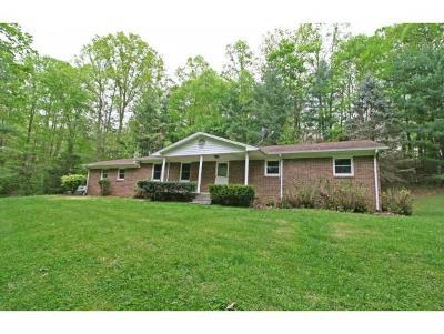 Elizabethton Single Family Home For Sale: 151 Mountain View Circle