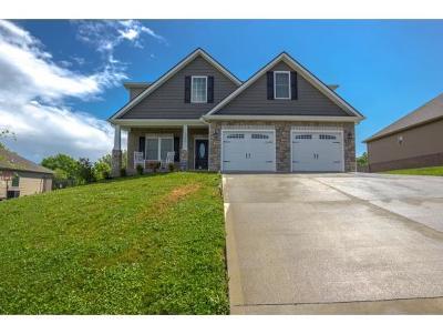 Washington-Tn County Single Family Home For Sale: 1220 Savin Falls