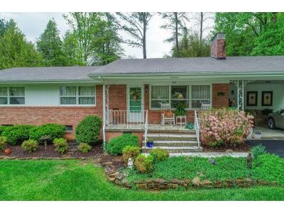 Elizabethton Single Family Home For Sale: 604 McClellan Circle