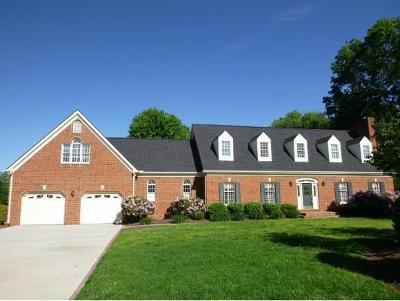 Kingsport Single Family Home For Sale: 1029 Winchester Lane