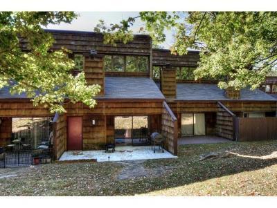 Johnson City Condo/Townhouse For Sale: 115 Beechnut Street #D2