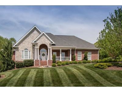 Bristol VA Single Family Home For Sale: $416,900