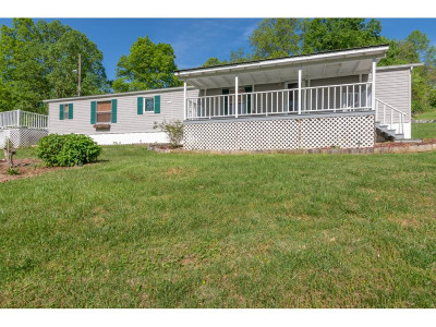 Damascus, Bristol, Bristol Va City Single Family Home For Sale: 21140 Darlington Drive