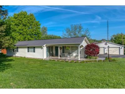 Abingdon Single Family Home For Sale: 23224 Shoreline Dr