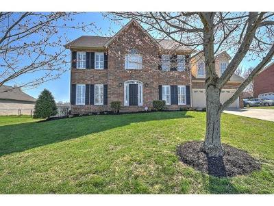 Jonesborough Single Family Home For Sale: 104 Oakwell Lane