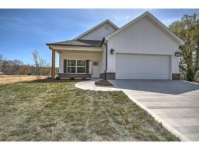 Kingsport TN Single Family Home For Sale: $199,900