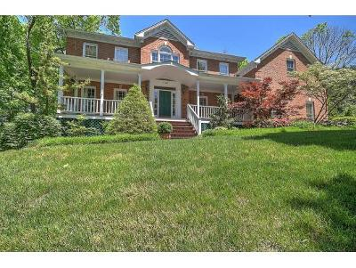 Kingsport Single Family Home For Sale: 1001 Oldham Court