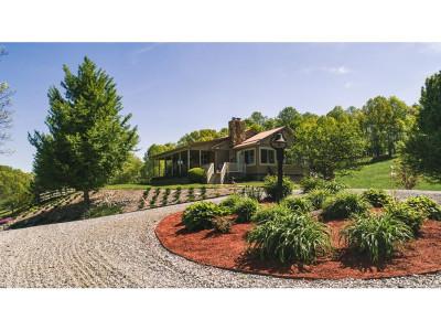 Abingdon Single Family Home For Sale: 23184 Twin Oaks Road