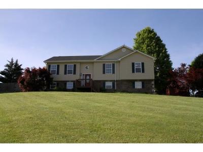 Jonesborough Single Family Home For Sale: 151 Elmer Walker Rd