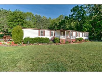 Single Family Home For Sale: 367 Adams Chapel Rd.