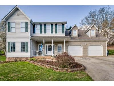 Hawkins County Single Family Home For Sale: 356 Lewis Ln