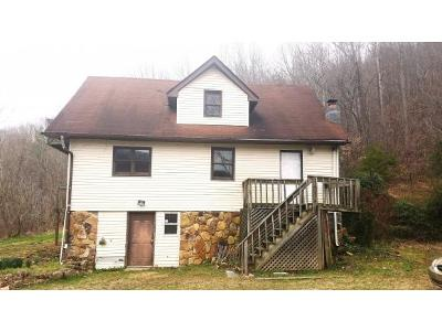 Rogersville Single Family Home For Sale: 360 Butcher Valley Rd