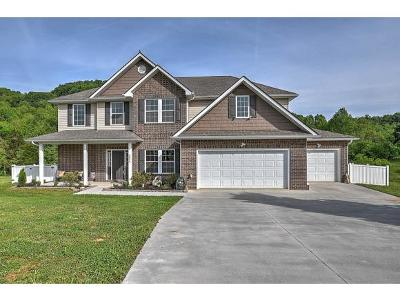 Kingsport Single Family Home For Sale: 2056 Falling Leaf Drive