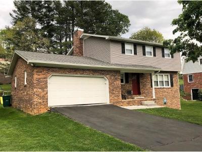 Bristol VA Single Family Home For Sale: $185,000