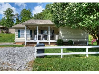 Elizabethton Single Family Home For Sale: 219 Taylor Avenue