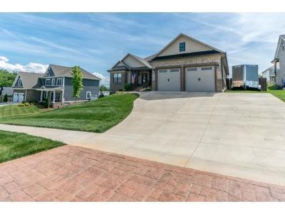 Washington-Tn County Single Family Home For Sale: 273 Laurel Canyon