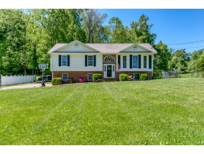 Rogersville Single Family Home For Sale: 342 Olde Stage Road