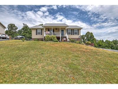 Jonesborough Single Family Home For Sale: 450 Mockingbird Place