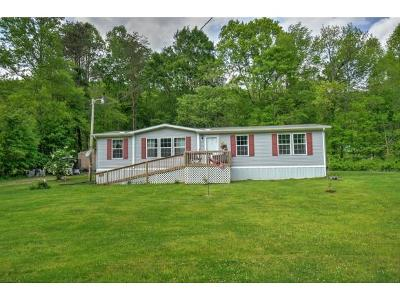 Single Family Home For Sale: 3000 Snake Hollow Road