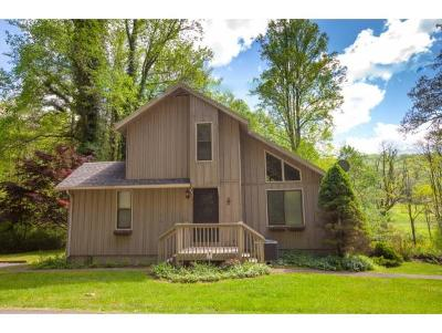 Erwin Single Family Home For Sale: 2040 Spivey Mountain Road