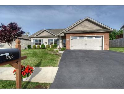 Washington-Tn County Single Family Home For Sale: 2105 Ida Sue Dr