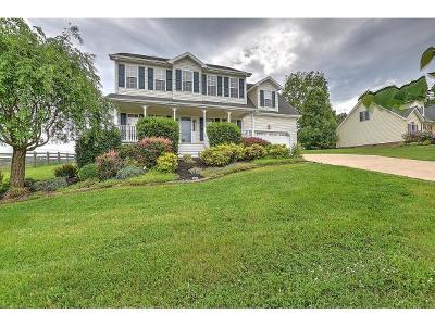 Jonesborough Single Family Home For Sale: 195 Alfalfa Lane