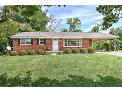 Single Family Home For Sale: 1205 Woodside Drive