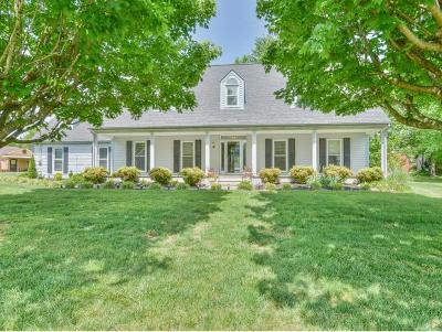 Johnson City Single Family Home For Sale: 4 Staunton Circle