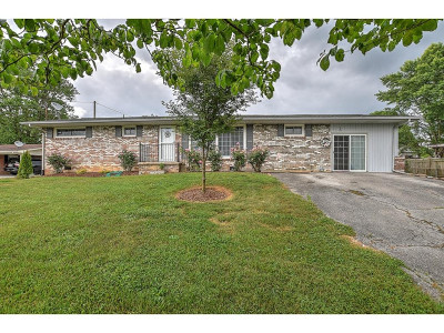 Gray Single Family Home For Sale: 346 Flourville Rd