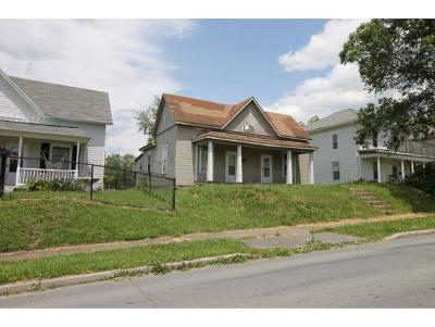 Johnson City Single Family Home For Sale: 826 Lamont St