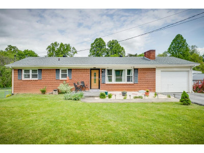 Damascus, Bristol, Bristol Va City Single Family Home For Sale: 2316 King Mill Pike