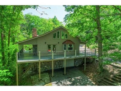 Elizabethton Single Family Home For Sale: 1301 Hillside Dr