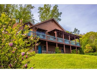 Single Family Home For Sale: 2092 Willens Gap Road