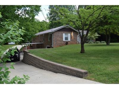 Johnson City Single Family Home For Sale: 1500 Woodland Ave