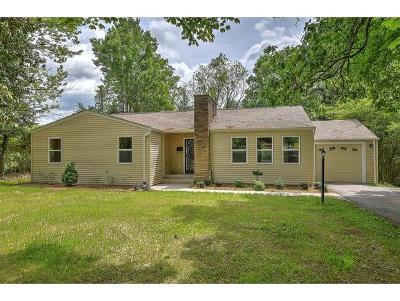 Bristol Single Family Home For Sale: 1313 Holston Dr.