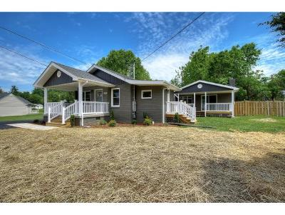 Elizabethton Single Family Home For Sale: 707 Parkway Blvd.