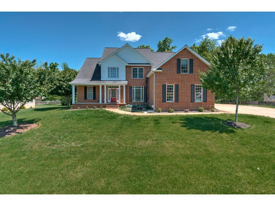 Jonesborough Single Family Home For Sale: 165 Timberlyne