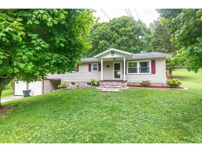 Damascus, Bristol, Bristol Va City Single Family Home For Sale: 253 Woodland Circle