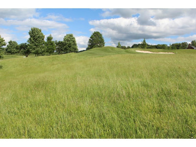 Greene County Residential Lots & Land For Sale: LT 1 Kingsport Highway