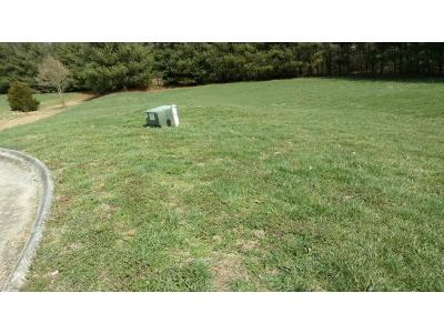 Hamblen County Residential Lots & Land For Sale: 4798 Leeann Drive