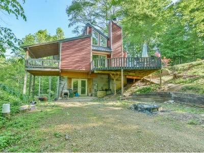Unicoi Single Family Home For Sale: 135 Buffalo Ridge Dr
