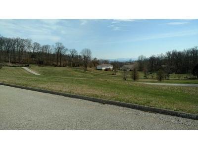 Hamblen County Residential Lots & Land For Sale: 1250 Savannah Drive