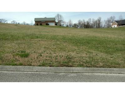 Hamblen County Residential Lots & Land For Sale: 1239 Fieldstone Drive