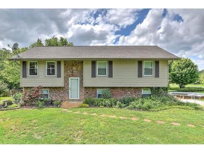 Jonesborough Single Family Home For Sale: 157 Hillcrest Circle