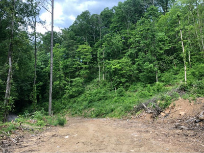 Greene County Residential Lots & Land For Sale: TBD Bear Hollow Rd